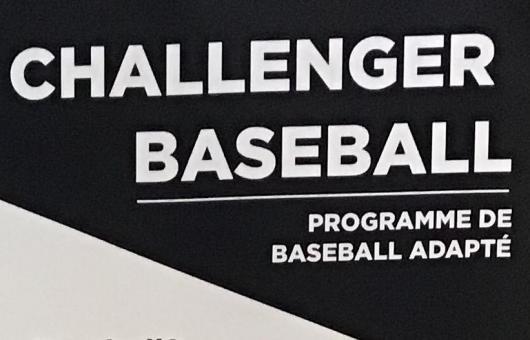 Challenger Baseball poster